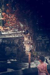 Japan1 (Yesidster) Tags: japan travel nature contrast photography asia cherryblossoms mtfuji photo aov architecture design home urban