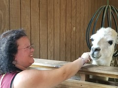 2018-09-30 12.51.19 (littlereview) Tags: carolinas littlereview 2018 travel museum animal family personal zoo barnyard blog