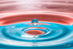 Water Drops #2 (Simone_Callegari) Tags: water waterdrops drop drops waterdrop macro macrophotography nikon nikond850 d850 105 105mm nikkor colors colori colores color acqua gocce goccia