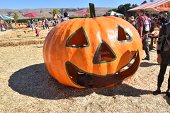 DSC_2564 (earthdog) Tags: 2018 needstags needstitle nikon d5600 nikond5600 18300mmf3563 fall autumn pumpkinpatch spinafarms farm scooter pumpkin food fakefood