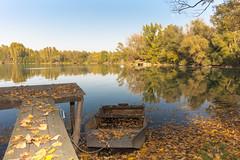 Lakeside feeling in October. (Gergely_Kiss) Tags: leavesonwater fallingleaves fallcolors canon5ds canon1635 autumnmood autumncolors autumn lakesideview bányató ösz gyékényes