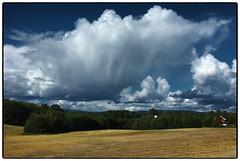 Furulund (Krogen) Tags: norge norway norwegen akershus romerike ullensaker krogen landscape landskap fujifilmx100