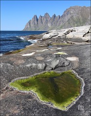Tide Pool at Tungeneset, Senja, Norway (ChipRossMaine) Tags: tungeneset senja rockpool tidepool norway scenicroute canoneosrebelt7i canoneos800d rebelt7i eos800d chipsfolio