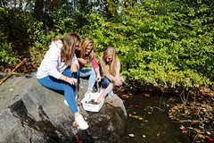 576A8944 (proctoracademy) Tags: apclass apenvironmentalscience apes academics cannonlilly classof2019 experientialeducation experientiallearning handsonlearning johnsoncharlotte larkinlulu pond science