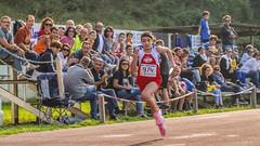 Giulia Olimpi