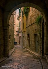 13112016-IMGP5380 (Mario Lazzarini.) Tags: via street pietra arco porte medieval lastricato historic old trani puglia italy
