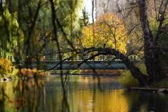 Autumn in the park (Jurek.P) Tags: citypark park autumn kępapotocka warsaw warszawa poland polska water bridge jurekp sonya77