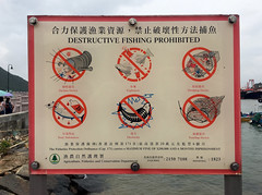 Destructive Fishing Prohibited (cowyeow) Tags: fish fishing nature destruction evil funny fail sign funnysign weird hongkong china chinese asia asian warning funnychina funnyhongkong explosives danger cruelty poaching suction suctiondevice device explosion dredge dredging toxic poisoning fishes river electricity electrocute substances government nets lantau island ocean shore harbour harbor seaside taio