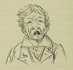 This image is taken from Page 38 of The breath of life, or, mal-respiration and its effects upon the enjoyments & life of man (Medical Heritage Library, Inc.) Tags: mouth breathing respiration universityofglasgow ukmhl medicalheritagelibrary europeanlibraries date1862 idb24923382