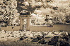Garden of Rest II (James Etchells) Tags: arnos vale garden cemetery bristol city urban ir infrared sepia old antique photographic toning effect 18th century eighteenth nikon photography tomb tombs landscape landscapes sky clouds colour color architecture ancient experiment exploring past heritage natural world nature light south west england uk britain monument abandoned overgrown statue