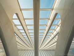 Gare de Guillemins ( Liège ) (vanregemoorter) Tags: line symétrie liège architecture lignes géométrique fenêtre