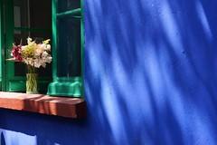 Casa Azul (sacipere) Tags: mexiko fridakahlo casaazul museum azul blau blue flowers coyoacan ciudaddemexico mexico