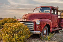 Truck in desert (Andrea Garza ~) Tags: santafe taos earthshipbiotecture hippiecommune chamisa desert fall newmexico