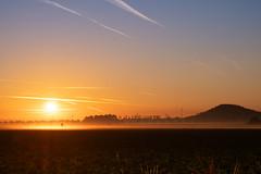 The Golden October (FoThoMe) Tags: kit fujinon deutschland germany nebel fog misty mist fujinon1855 fujifilmxt2 sunrise sonnenaufgang