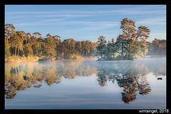 eiland in de mist 1 oisterwijk 2018 (wimsingel) Tags: oisterwijk mist meer boom landschap herft ochtendlicht eiland noordbrabant spiegel spiegeling samsung