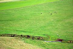 Green Fields (JB by the Sea) Tags: southiceland southconstituency suðurkjördæmi southcoast iceland ísland europe september2018 skógar skogar rangárþingeystra