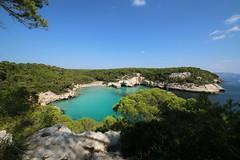 Cala Mitjana (daniel.virella) Tags: mediterrànea mediterraneum sea tourquoise beach pines nature cala calamitjana mitjana menorca illesbalears baleares espanya españa spain picmonkey