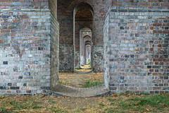 The Viaduct (PhredKH) Tags: 2470mm architecture arnospark canoneos5dmkiii canonphotography ef2470mmf4lisusm fredkh greenlondon london northlondon parkland photosbyphredkh phredkh splendid urbanlondon urbanpark arches structure viaduct grass