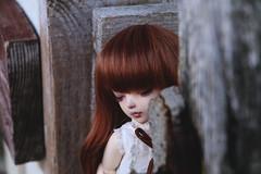 ssh006 (here.heidin) Tags: bjd bjdgirl balljointeddoll fairyland ltf littlefee chloe sp yosd redhead doll abjd