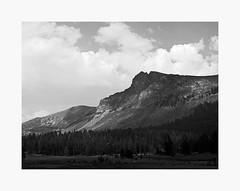 Tioga Pass | A Road Trip (bnishimoto) Tags: minimal roadtrip fujifilm acros bw monochrome xpro2 18135mm landscape sky wood forest mountainside mountain