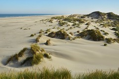 Dunes of Terschelling (ToSti NL) Tags: dunes beach sea northsea sand plage mer nature landscape paysage