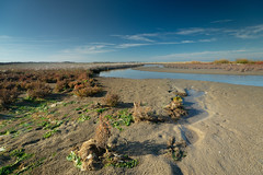 Low tide at the Dutch coast. (Bluedee2010) Tags: dunes dutchcoast low tide area
