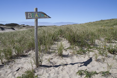 To the Beach! (brucetopher) Tags: dune beach dunes sand hike outdoor hiking travel outside duneshack trail nature provincetown seashore shore coast coastline grass flora sky landscape new england
