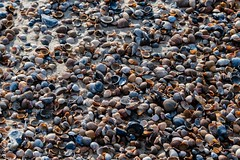 Zeeland-2037 (clickraa) Tags: domburg walcheren zeeland coast beach
