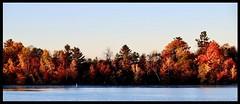 Autumn colours (joanneclifford) Tags: rideauriver rideau river ottawa mooneysbay autumn fall colours trees sunrise mist fujifilmxt20 xf1855 morning october