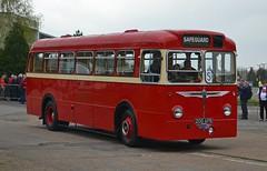 200 APB (tubemad) Tags: 200apb burlingham aec reliance safeguard coaches cobham spring rally