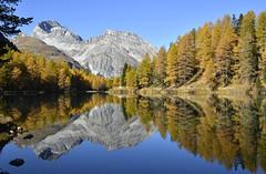 *R*E*F*L*E*C*T*I*O*N*S* (JohannesMayr) Tags: palpuognasee schweiz switzerland see lake graubünden himmel sky wasser water spiegelung reflections berg mountain alpen alps albula pass