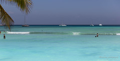 Saona beach- Punta Cana 1 (Bouhsina Photography) Tags: plage saona île république dominicaine été 2018 bouhsina bouhsinaphotography catamaran eau turquoise caraibes canon 5diii