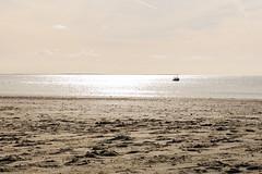 Goldener Strand (JBsLightAndShadow) Tags: borkum niedersachsen lowersaxony ostfriesland friesland nordsee northsea meer see sea herbst autumn fall 2018 insel island nordseeinsel northseaisland friesischeinseln friesischeinsel nikon nikond750 d750 tamron tamronsp2470mmf28divcusd strand beach sunset sonnenuntergang licht light mood moody stimmung