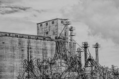 feed mill b&w (JiminSC) Tags: old mill agriculture industry building grain food farm corn vintage metal feed farming flour pipe plant storage industrial sky grind equipment seed architecture wooden electric silo wheat crop scene cereal traditional tin structure factory auger feedmill tube silos agribusiness deserted abandoned weathered vacant milling rusty