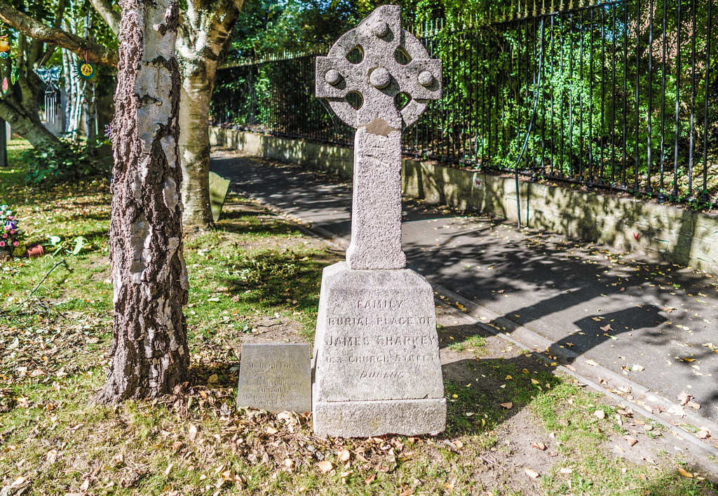 SEPTEMBER 2018 VISIT TO GLASNEVIN CEMETERY [ I USED A BATIS 25mm LENS AND I EXPERIMENTED WITH CAPTURE ONE]-144746