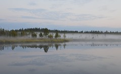 Mistification (Titaniumskein) Tags: mist nature water clouds reflection trees fog lake sky
