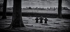 """3"" (Eric@focus) Tags: cemetery deutsch german soldiers cross flanders wwi clouds sky rays deutschekriegsgräberstättelangemark cropped dxonikfilters silverefexpro2 nikond7100 erichuybrechts blackwhitephotos noiretblanc"
