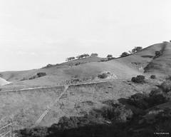 hilly landscape (markjwyatt) Tags: chinohills berggerpancro400 mamiyac330f 80mmf28 hills oaks grass trails roads sky monochrome ilfotecddx greenyellowfilter