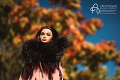 Selesta (astramaore) Tags: astramaore dollphotography poppyparker poppy brunette shorthair fall autumn girl from integrity