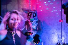 DSC08738 (Kory / Leo Nardo) Tags: frolic party frolicparty fur furry fursuit fursuiting sona fursona sanfrancisco california bar club theeaglebar eagle 2018 dance dj pupleo