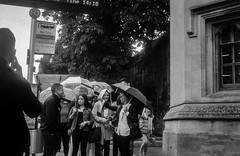 2018-08-19 & 20 Agilux Shillingford & Oxford (17 of 26) (Pete K) Tags: agilux agimatic oxford staldates people rain umbrella
