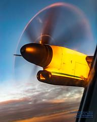Q400 Prop Disk Up in the Sunset Clouds at 4,175 Feet (AvgeekJoe) Tags: iflyalaska aerialphotograph alaskaair alaskaairlines bombardierdhc8402q bombardierdash8400 bombardierdash8q402 bombardierq400 d5300 dhc8402q dslr dash8 dehavillandcanadadhc8402qdash8 dowtyr408 dowtyr408propeller horizonair n430qx nikon nikond5300 propdisk propeller propliners q400 r408 tamron18400mm tamron18400mmf3563diiivchld aerial aerialphoto aerialphotography aircraft airplane aviation plane propblur propliner turboprop