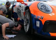 Pierre Martinet by Alméras Porsche 911 GT3 Cup (Y7Photograφ) Tags: pierre martinet by alméras porsche 911 gt3 cup misslin nicolas castellet paul ricard httt gt ffsa nikond7100 motorsport racing