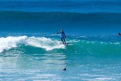 IMG_6775 (palbritton) Tags: surf surfing surfer singlefin longboard longboardsurfing surfcontest