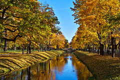 In A Park (kanyck (Thanx 4 0.5M views!)) Tags: 1835 d7200 nikon sigma autumn water trees park ducks leaves foliage channel reflection serene ngc