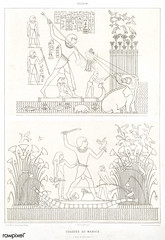 Swamp hunting from Histoire de l'art égyptien (1878) by Émile Prisse d'Avennes (1807-1879). Digitally enhanced by rawpixel. (Free Public Domain Illustrations by rawpixel) Tags: otherkeywords anillustrationoftheegyptian ancestry ancient ancientegyptian ancientegyptianart antique archaeological archeology architecture art artwork carving cc0 design designing drawing dynasty egypt egyptian egyptiankingdom egyptology empire gods handdraw handdrawn histoiredelartégyptien historical history hunting illustration kingdom mythology old oldfashioned outlines outlinesfromtheantique pattern pharao psd romans sepia sketch story swamp traditional vintage worker worship émileprissedavennes