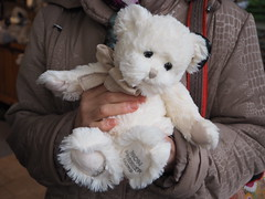 PA270416 (pepito2551) Tags: peluche ours animal ourspolaire