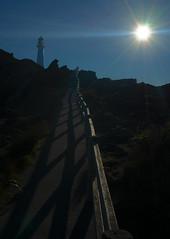 Walk Towards The Light (Lyndon (NZ)) Tags: 2018 lighthouse castlepoint newzealand nz architecture sunrise sun coastal leadinglines path track fence shadow ilce7m2 sony wairarapa