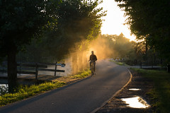 September Bicycle Commute 3 of 4 (beeldmark) Tags: ochtend fiets nederland provincieutrecht zonnig mist woonwerk thenetherlands オランダ commute fog foggy mistig netherlands sunny bicycle cycling fietsen