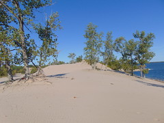Sandbanks Dunes (3) (Quevillon) Tags: park sandbanksprovincialpark ontarioparks westlake athol sandbanksdunesbeach dunes canada ontario easternontario centreontario princeedwardcounty isleofquinte